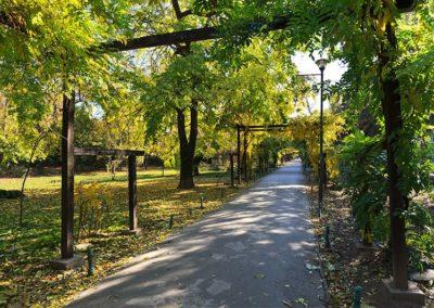 City Parks Project